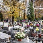 Cmentarz sennik - interpretacja snu.