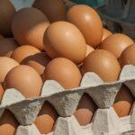 Sennik jajka - znaczenie i interpretacja snów o jajku.
