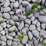 Sennik kamień - znaczenie i interpretacja snu